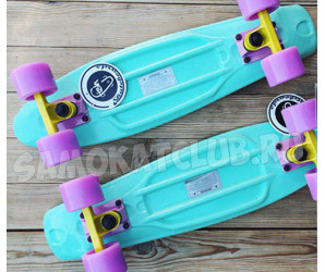 "Fish SkateBoards мини-круизер 22"" Мятный"