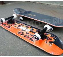 Скейтборд FISH TLS-3108CA PRO 2020 деревянный